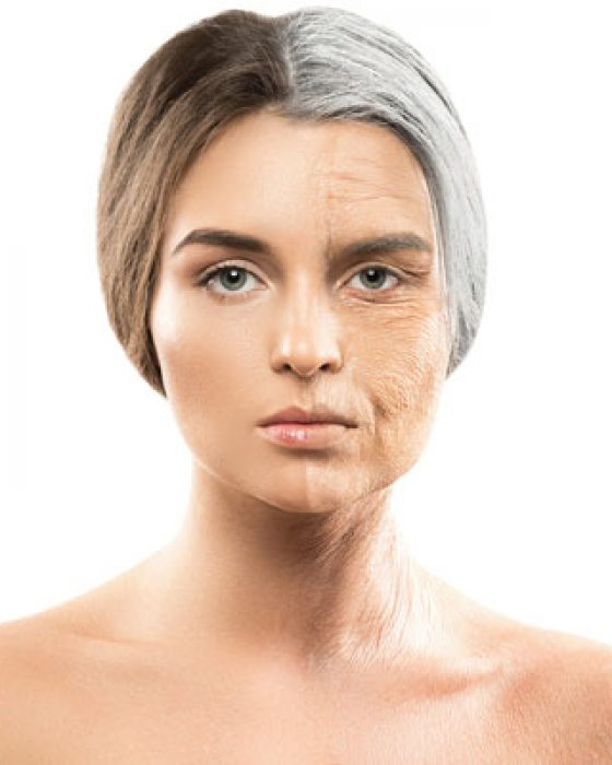 Aging of the face by Dr BCK Patel for Hammock Lift